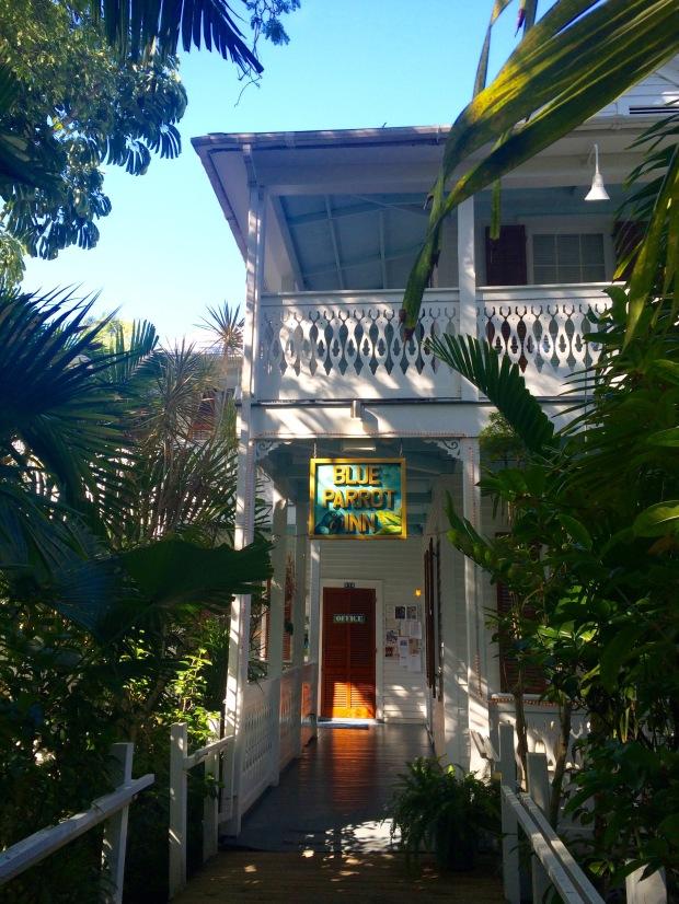 The Blue Parrot Inn